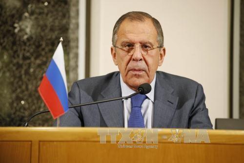 Menlu Rusia mengadakan jumpa pers  besar sehubungan dengan Tahun Baru 2016 - ảnh 1