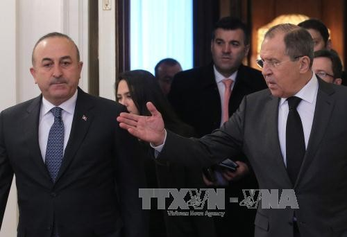 Russia, Turkey agree to push for a ceasefire in Syria - ảnh 1