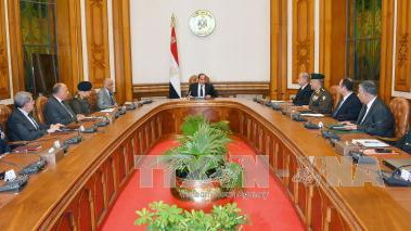 Egypt's parliament approves three-month state of emergency - ảnh 1