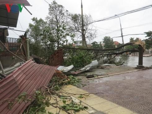 Vietnam strives to minimize damage from Talas storm - ảnh 1