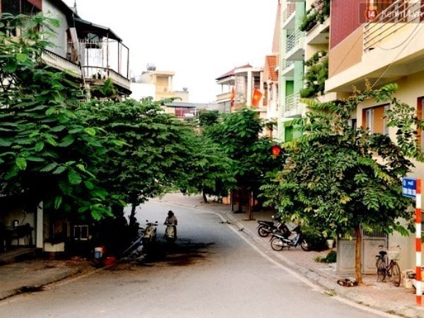 Art, cuisine space in Tay Ho district - ảnh 1