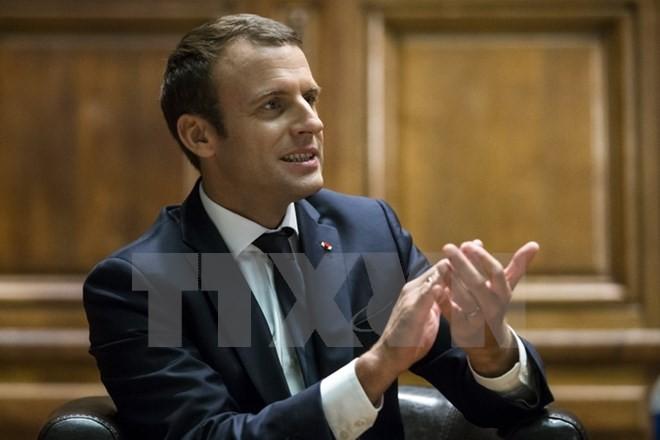Francia promete presentar a la ONU una propuesta internacional sobre el cambio climático - ảnh 1