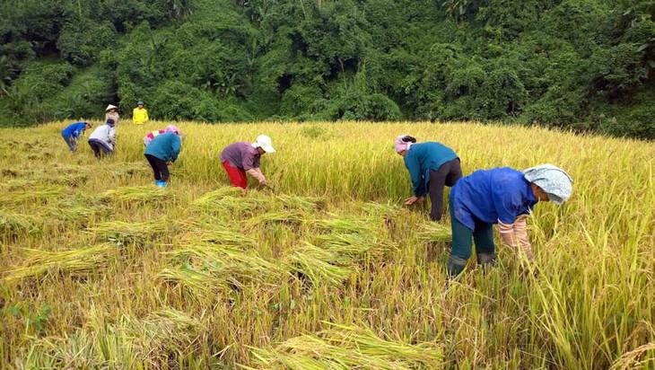 Vietnam prioriza la reducción de la desigualdad económica en el nuevo período de desarrollo - ảnh 2