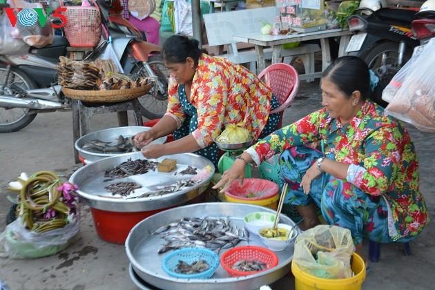 El Delta del río Mekong en la temporada de crecidas - ảnh 2