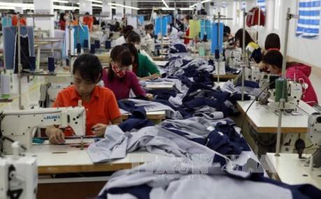 Vietnam determinado a aprovechar las ventajas coyunturales de la población activa - ảnh 1