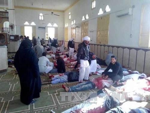La comunidad internacional critica el atentado terrorista en la mezquita Al Rawdah en Egipto - ảnh 1