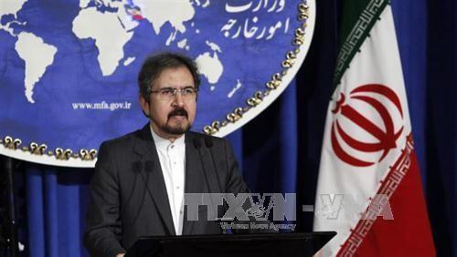 Irán refuta la disposición nacional de negociar con Europa su programa nuclear - ảnh 1
