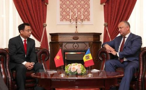Moldavia busca fomentar las relaciones de cooperación multisectorial con Vietnam - ảnh 1