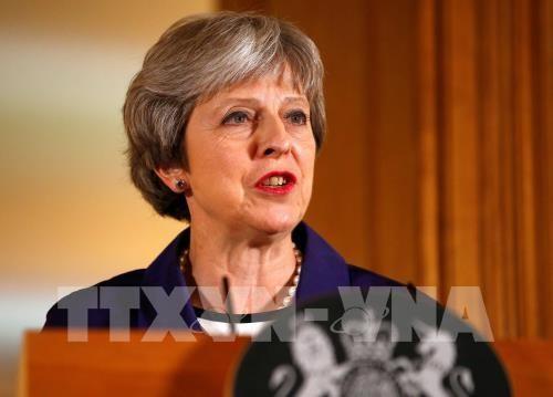 Primera ministra británica llama a la unidad interna para resolver el tema de Brexit - ảnh 1
