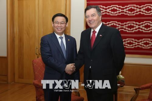Vicepremier vietnamita cumple la agenda de trabajo en Chile - ảnh 1