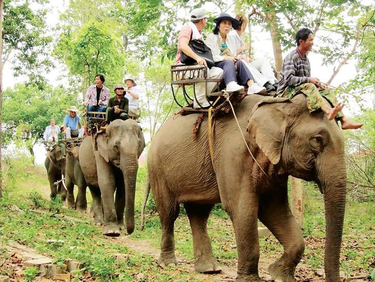 Región central de Vietnam busca reformar el desarrollo del ecoturismo - ảnh 1