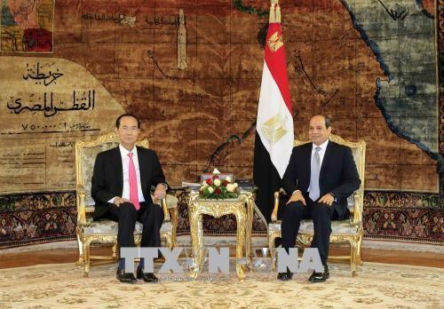 Jefe de Estado de Vietnam termina visita de trabajo a Egipto - ảnh 1