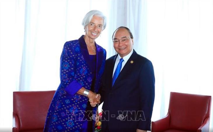 Vietnam incrementa la cooperación con el Fondo Monetario Internacional - ảnh 1