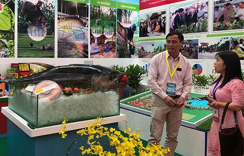 Vietnam fortalece aplicación de avances tecnológicos en la producción agrícola - ảnh 1