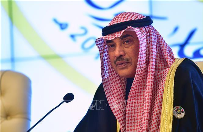 Kuwait y Arabia Saudita se esfuerzan por solucionar la crisis del Golfo - ảnh 1
