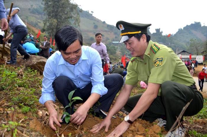 Provincia de Yen Bai revitaliza el medio ambiente con el Festival de Siembra de Árboles 2019 - ảnh 1