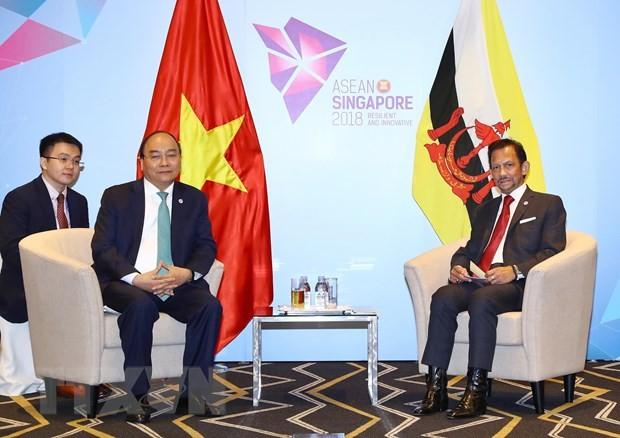 Vietnam y Brunei refuerzan la cooperación multisectorial - ảnh 2