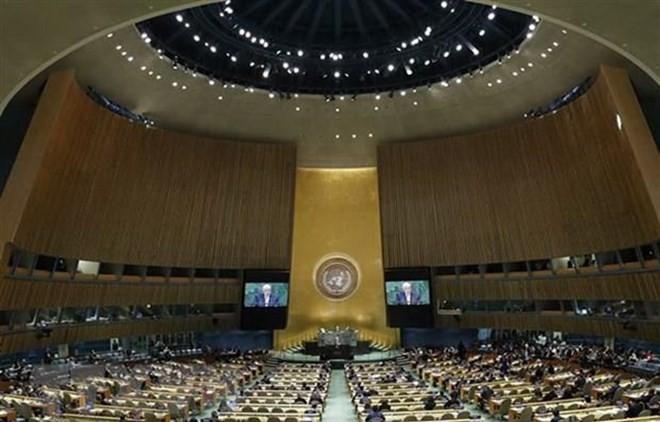 Vietnam reafirma compromisos internacionales contra financiamiento del terrorismo - ảnh 1