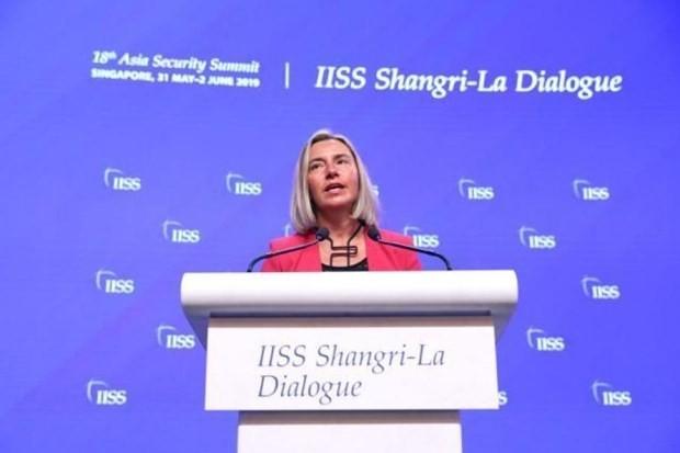 Unión Europea determinada a firmar acuerdo marco de asociación con Vietnam - ảnh 1