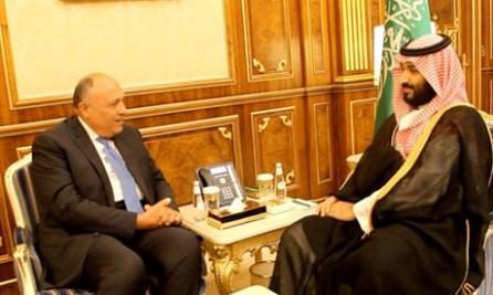 Egipto y Arabia Saudita ponen de relieve la solidaridad entre los estados árabes - ảnh 1