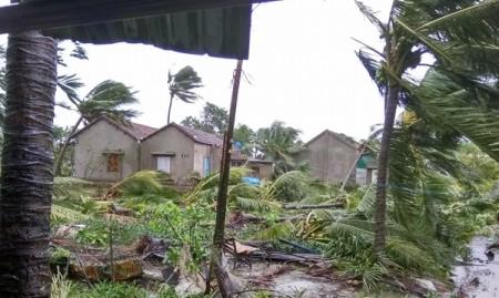 Suministran apoyo millonario a Vietnam para superar las consecuencias del tifón Damrey - ảnh 1