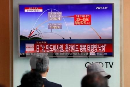 Estados Unidos y Rusia acuerdan continuar su diplomacia sobre Corea del Norte - ảnh 1