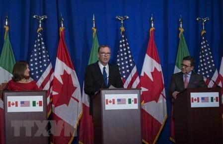 TLCAN calienta Cumbre de los países latinoamericanos  - ảnh 1