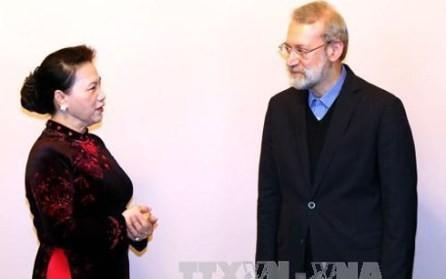 Líder parlamentario iraní visita Vietnam - ảnh 1