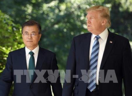 Estados Unidos y Corea del Sur prometen esforzarse por la desnuclearización de la península coreana - ảnh 1