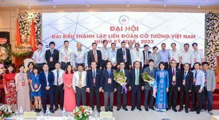 Por un futuro más brillante del ajedrez chino de Vietnam  - ảnh 1