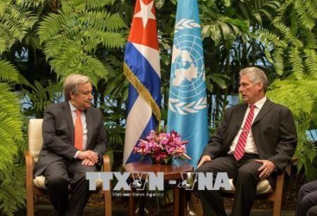 Jefe de la ONU  visita Cuba para la reunión de la Cepal - ảnh 1
