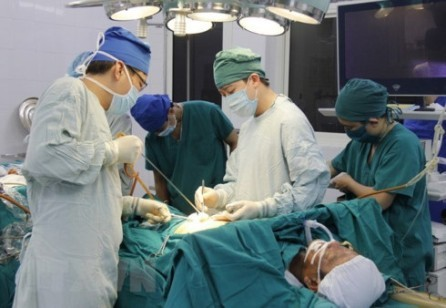 Vietnam activo en el marco de la Asamblea Mundial de la Salud en Ginebra - ảnh 1