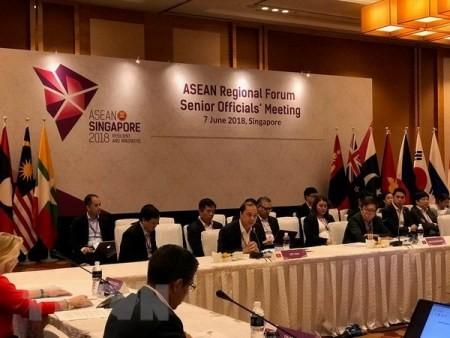 Funcionarios de Asean y países socios dialogan sobre la cooperación regional - ảnh 1