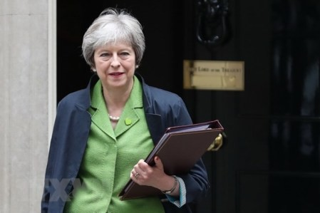 Theresa May promete 20 mil millones de libras esterlinas extras para el cuidado de la salud  - ảnh 1