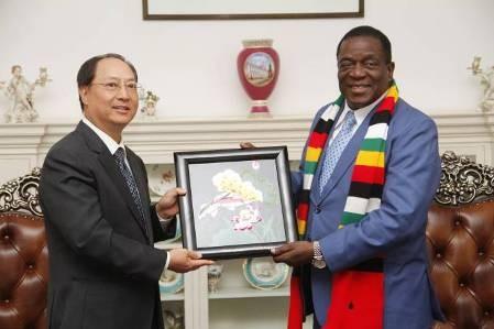Zimbabue y Vietnam estrechan lazos  - ảnh 1
