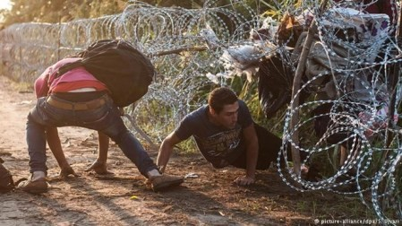 Alemania y Hungría discrepan ante la política migratoria  - ảnh 1