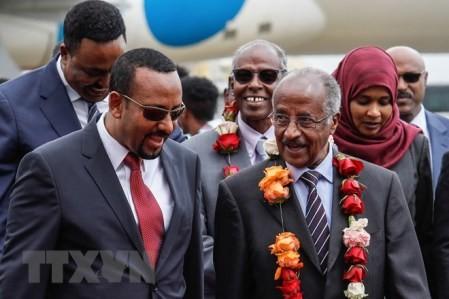 ONU considera eliminar sanciones contra Eritrea  - ảnh 1