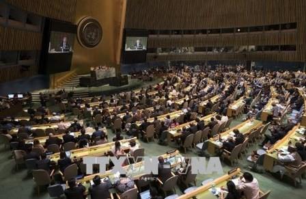 ONU aprueba el tratado sobre los Derechos de los Migrantes  - ảnh 1