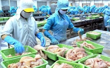 Esfuerzos del sector pesquero vietnamita por eliminar la tarjeta amarilla de la Unión Europea - ảnh 1
