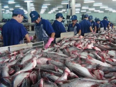 """Urgen el despliegue de la Ley de Pesca y la superación de la """"tarjeta amarilla""""  - ảnh 1"""