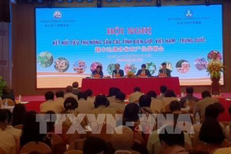 Refuerzan el enlace del consumo de productos agrícolas entre Vietnam y China - ảnh 1