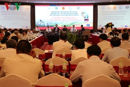 Promueven desarrollo de la cadena de valor en las minorias étnicas de Vietnam - ảnh 1