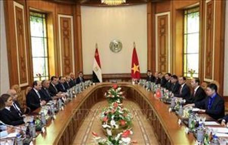 Presidente de Vietnam confía en el gobierno de Abdel Fattah El Sisi - ảnh 1