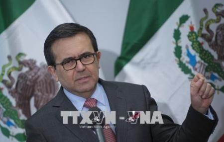 México: TLCAN debe modificarse sin Canadá - ảnh 1