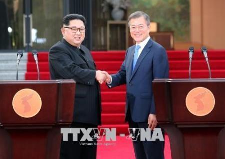 Comunidad internacional alaba resultado de la tercera cumbre entre las dos Coreas  - ảnh 1