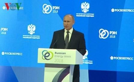 Efectúan en Rusia un foro sobre el desarrollo de la energía sostenible  - ảnh 1