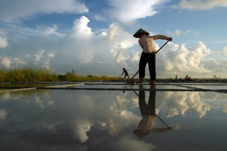 La belleza de las trabajadoras vietnamitas  - ảnh 5