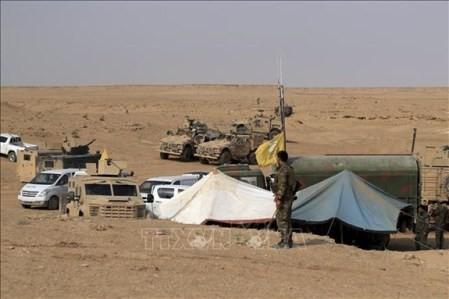 Estado Islámico retoma control de regiones orientales sirias  - ảnh 1