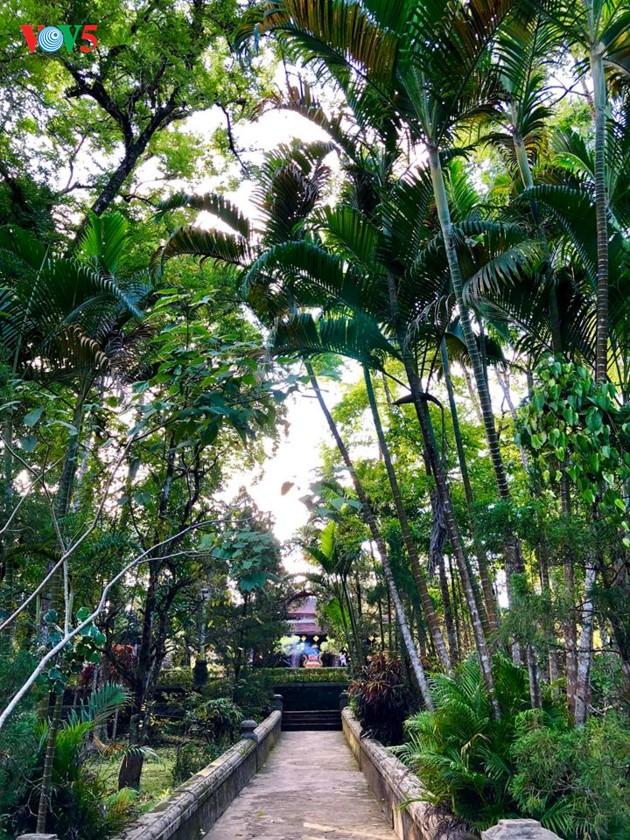 La mística belleza de la pagoda Tu Hieu, en la ciudad de Hue - ảnh 5