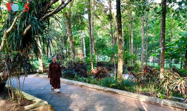 La mística belleza de la pagoda Tu Hieu, en la ciudad de Hue - ảnh 6